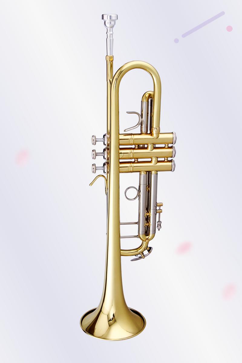 泰山专业性小号漆金款 TSTR-805