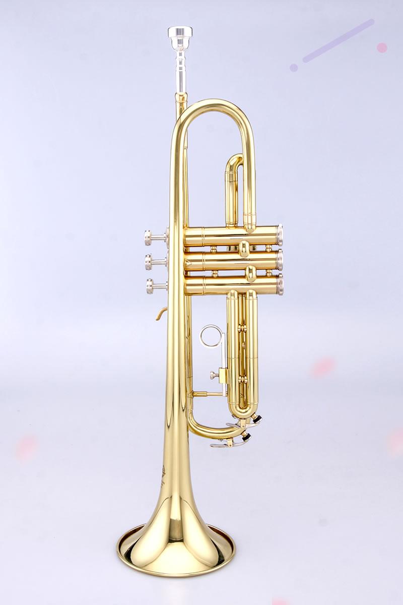 泰山普及型小号漆金 TSTR-801
