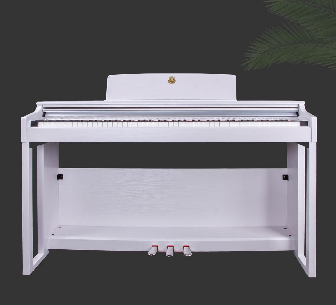 泰山电钢琴TSAM-5100白